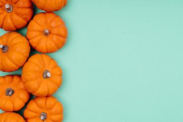 Pumpkins over neo mint background. Autumn, Halloween concept.Copy space for text. Fotoväggar