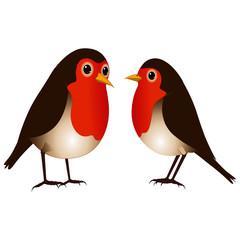 Two Robin Birds - Vector Image