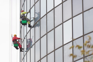 Fototapeta Two men workers in red and yellow suits hanging on ropes by the exterior windows of a skyscraper and cleansing them - industrial alpinism - overcast weather obraz