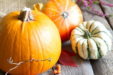 Autumn pumpkins on wooden boards background
