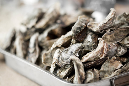 Close up of fresh oysters in big plate for sale outdoor