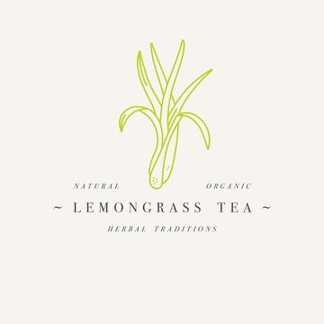 Vector design colorful templat logo or emblem - organic herb lemongrass tea. Logos in trendy linear style isolated on white background.