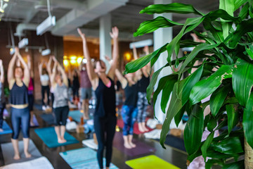 Diverse group of people in yoga class. Blurry people are seen practicing the upward hand stretch pose during 108 salutations to the sun, a spiritual set of movements traditionally done at solstice.