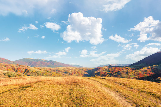 beautiful mountain landscape in autumn. wonderful sunny afternoon weather with fluffy clouds on the sky. forested hills rolling in to the distant mountain ridge. path along the grassy meadow