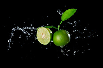 Fresh lime with water splash flying in the air isolated on black background