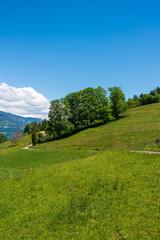 Landscape in Aeschi bei Spiez