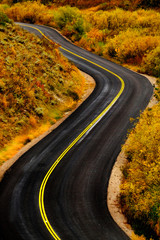 Road with Yellow Stripes Winding Driving