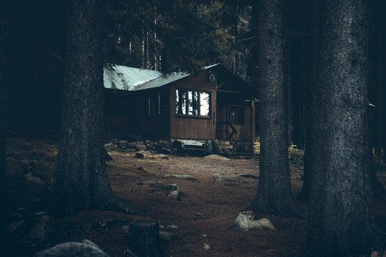 Einsame Hütte mit im dunklen Wald