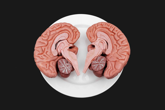 human zombie brain on plate halloween horror background texture wallpaper