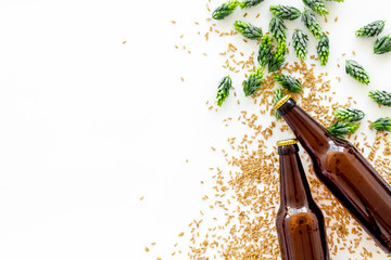 Barley and hop for making beer on white background top view copy space
