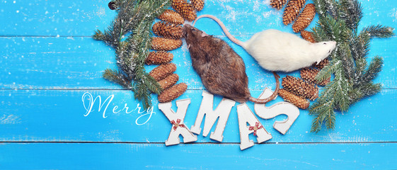 Wide horizontal banner with rats inside Christmas frame