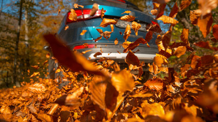 LOW ANGLE: Dry tree leaves rustle and fly in air as SUV drives down the road