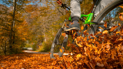CLOSE UP: Unrecognizable man rides mountain bike into a pile of fallen leaves Wall mural