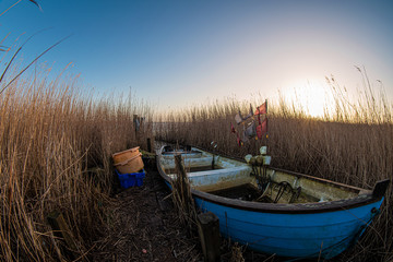 Altes Fischerboot liegt im Schilf an einem See in Dänemark