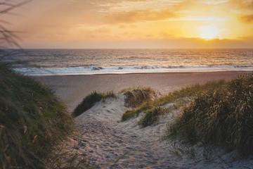 Sonne über dem Strand in Dänemark