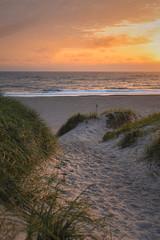 Sonnenuntergang auf dem Weg zum Strand an der Nordsee in Dänemark