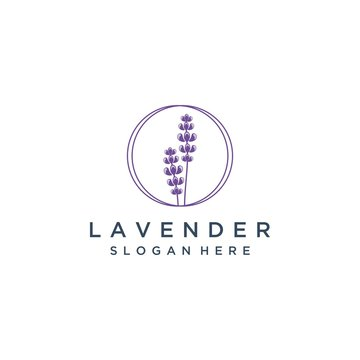 natural logo design of lavender flowers with circles