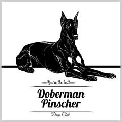 Doberman Pinscher Dog - vector illustration for t-shirt, logo and template badges