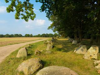 Archäologisch interessante Megalith Großsteingrab aus der Jungsteinzeit bei Blekendorf und Futterkamp nahe Hohwacht in Schleswig-Holstein