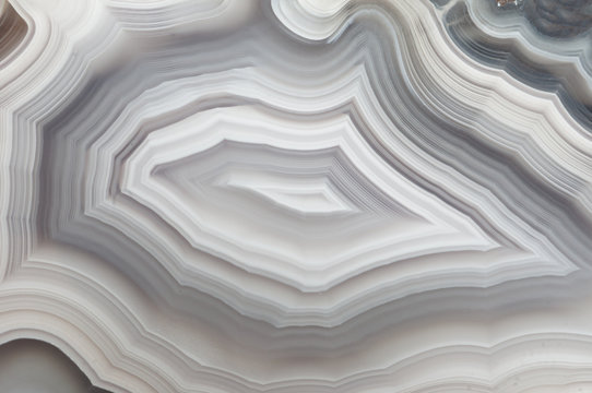 Polished surface of an agate specimen, showing a banded pattern in gray and white colors.