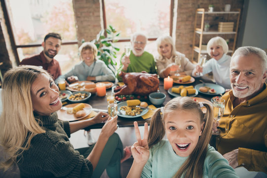 Cheers. Photo of big family sit feast dishes table roasted turkey multi-generation relatives shooting selfies showing v-sign raising wine glasses in living room indoors
