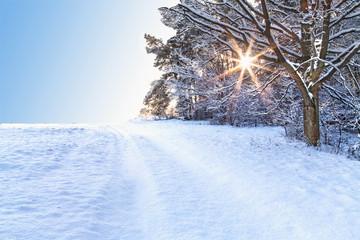 Foto auf AluDibond Eisenbahnschienen Winterlandschaft mit Sonne