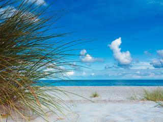 Blick auf den Strand mit Strandhafer und das Meer