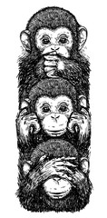 Wall Murals Hand drawn Sketch of animals Tattoo art sketch monkeys, ears closed, eyes closed, closed mouth black and white