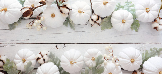 Autumn double border banner of white pumpkins and silver leaves over a rustic white wood...