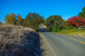 Country Road-03