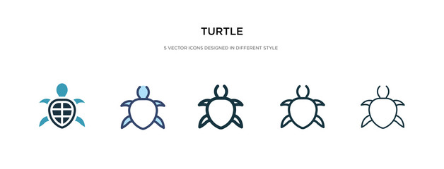 turtle icon in different style vector illustration. two colored and black turtle vector icons designed in filled, outline, line and stroke style can be used for web, mobile, ui Wall mural