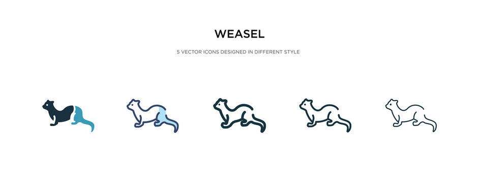 weasel icon in different style vector illustration. two colored and black weasel vector icons designed in filled, outline, line and stroke style can be used for web, mobile, ui