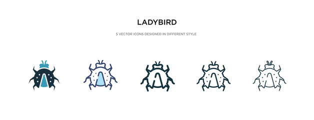 ladybird icon in different style vector illustration. two colored and black ladybird vector icons designed in filled, outline, line and stroke style can be used for web, mobile, ui