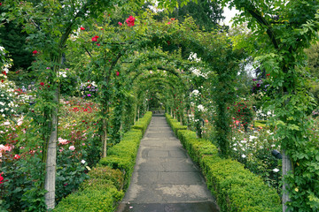 Foto op Canvas Tuin A path through the rose garden at Butchart Gardens