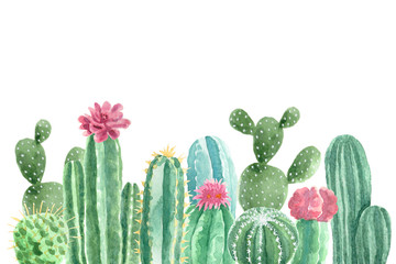 Watercolor Cacti and Succulents Wall mural