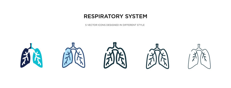 respiratory system icon in different style vector illustration. two colored and black respiratory system vector icons designed in filled, outline, line and stroke style can be used for web, mobile,