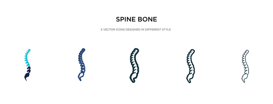 spine bone icon in different style vector illustration. two colored and black spine bone vector icons designed in filled, outline, line and stroke style can be used for web, mobile, ui