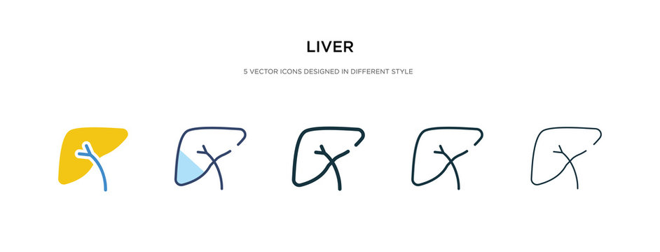 liver icon in different style vector illustration. two colored and black liver vector icons designed in filled, outline, line and stroke style can be used for web, mobile, ui