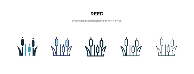 reed icon in different style vector illustration. two colored and black reed vector icons designed in filled, outline, line and stroke style can be used for web, mobile, ui