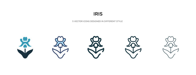 iris icon in different style vector illustration. two colored and black iris vector icons designed in filled, outline, line and stroke style can be used for web, mobile, ui