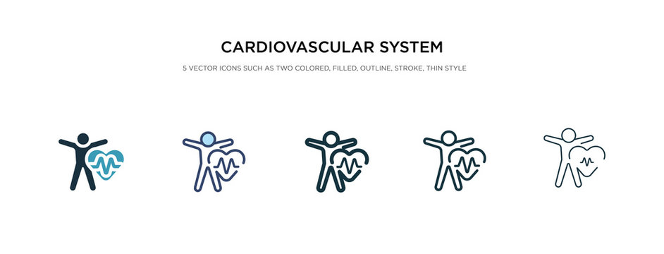 cardiovascular system icon in different style vector illustration. two colored and black cardiovascular system vector icons designed in filled, outline, line and stroke style can be used for web,