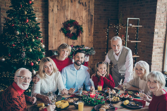 Photo of full big family gathering sit dinner table multi-generation reunion posing for holiday portrait in newyear atmosphere decor living room evergreen tree indoors