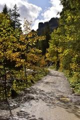 Dolina Koscieliska Tatry jesiennie TPN