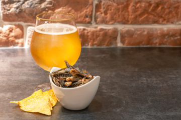 Insect snacks served with beer