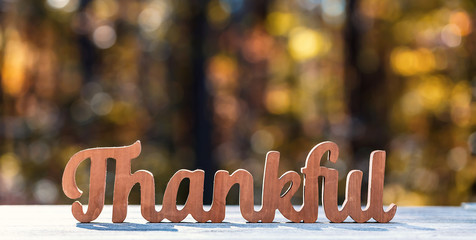 Image result for thankful free stock image