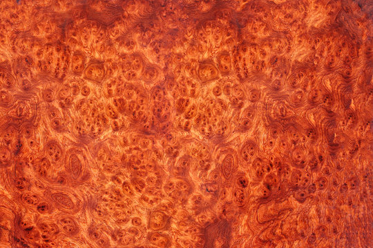Amboyna wood burl Exotic For Picture Prints