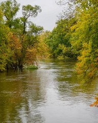 River water flowing along Autumn trees