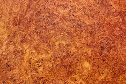 amboyna wood exotic burl strip wallpaper background