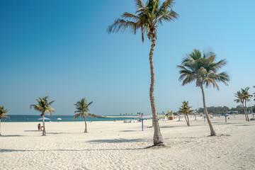 Fototapeta rajska plaża z palmą