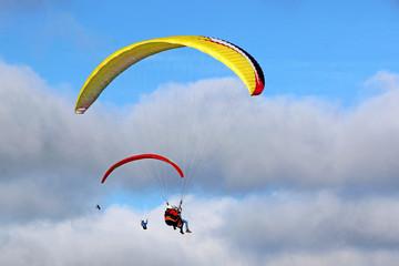 Fototapete - Paragliders flying wings in a blue sky